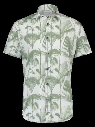 A FISH NAMED FRED Shirt  Bamboo Green